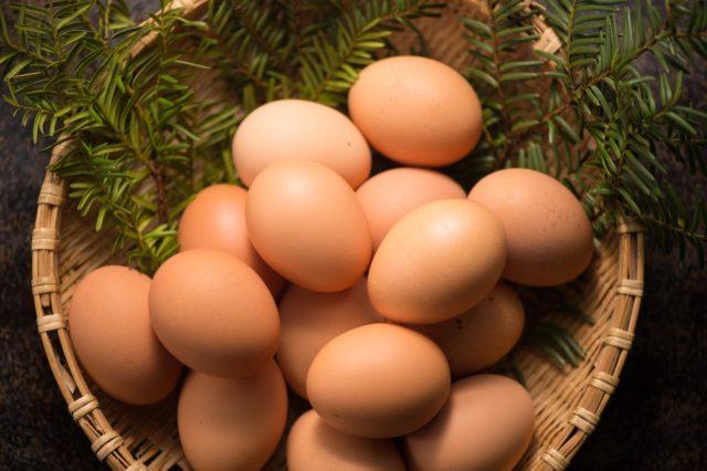 ひよこ豆には血流改善に最適な葉酸が豊富?ひよこ豆のレシピも紹介